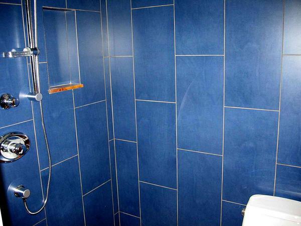 Name Blue Tile Shower 1 Jpg Views 7060 Size 38 7 Kb