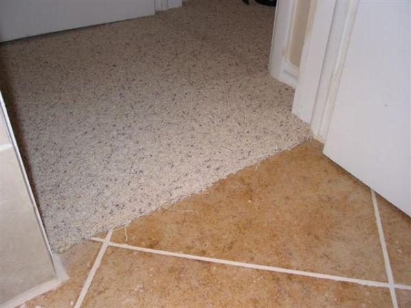 Brand new Carpet to Tile Transition-How to info - Ceramic Tile Advice Forums  AV05
