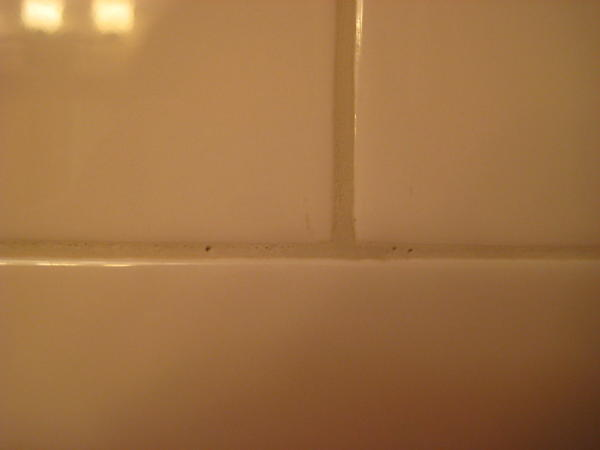 Pin Holes In Shower Grout Ceramic Tile Advice Forums