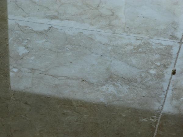 Efflorescence On Marble Tile Floor Ceramic Tile Advice