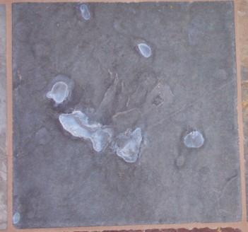 White spots on slate after sealing Ceramic Tile Advice
