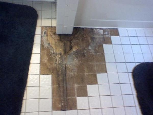 Please Help Fix The Rotten Wood Under Bathroom Tile