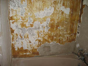 Thinset As A Skim Coat Over Plaster Ceramic Tile Advice