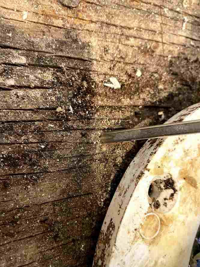 Name:  floor damage.jpg Views: 115 Size:  45.0 KB