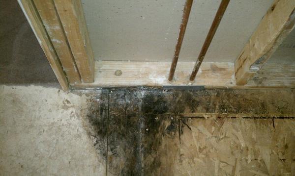 Mike S Master Bath Remodel Ceramic Tile Advice Forums