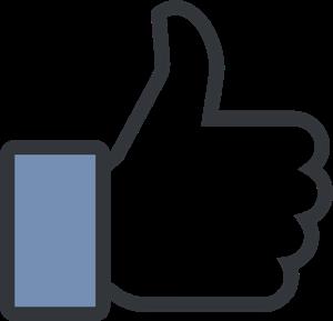 Name:  facebook-like-logo-32FAB6926D-seeklogo.com.png Views: 269 Size:  11.1 KB