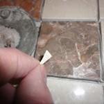 Tiny drain cut.